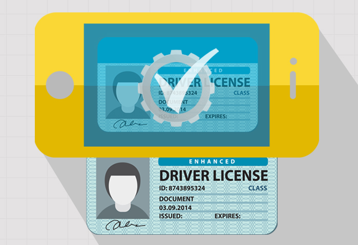 Drivers License Verification Online: Technology and Process